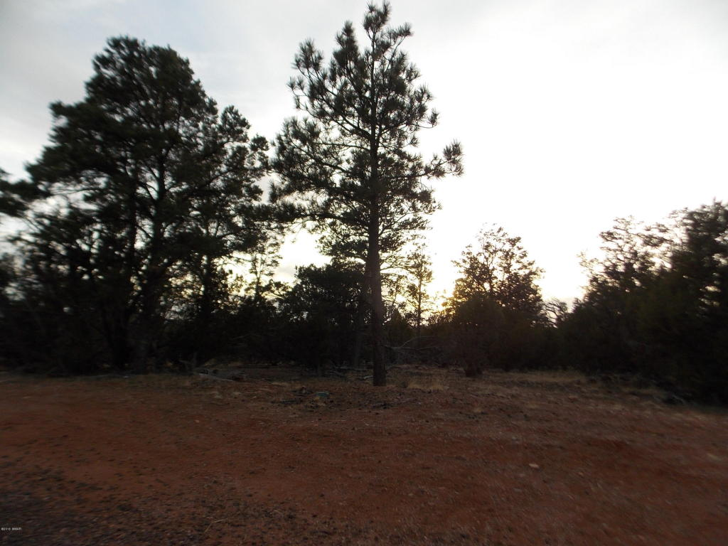 2836 Thunderbird Way Overgaard, AZ 85933 - MLS #: 218176
